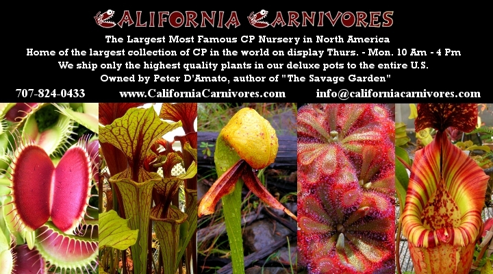 California Carnivores
