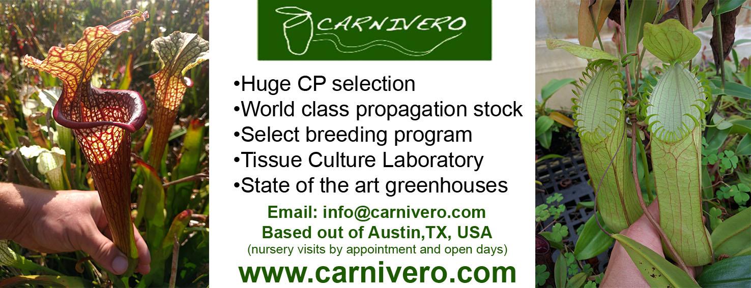 International Carnivorous Plant Society CPN Advertisers