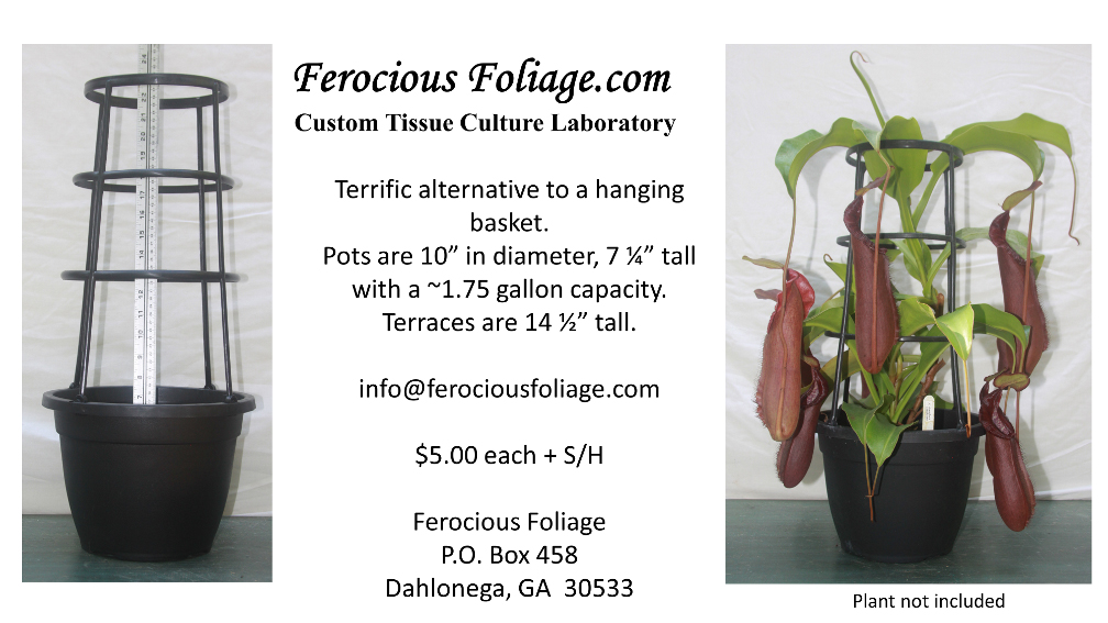 Ferocious Foliage
