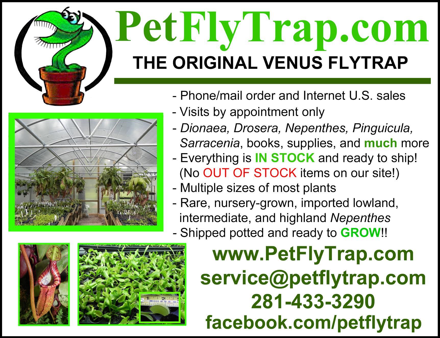 Petflytrap